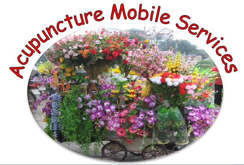Acupuncture Mobile Services