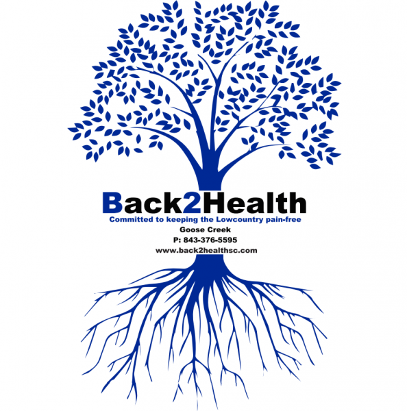 Back 2 Health Physical Medicine