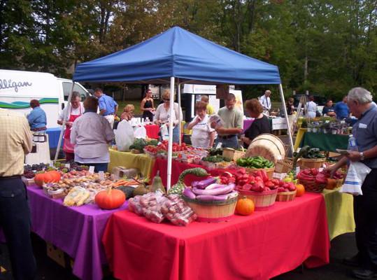 Parkland Community Health Fair